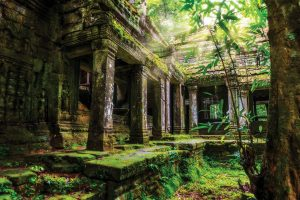 AMONG THE RUINS OF SIEM REAP